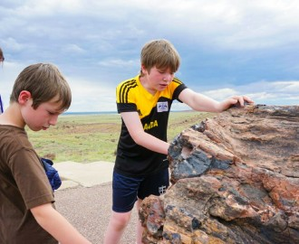 Collin and Ryan inspecting petrified wood