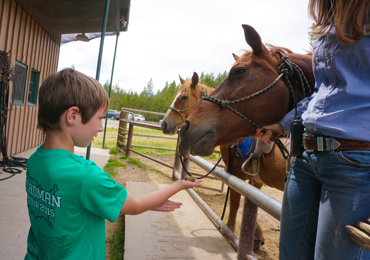 Horseback at Grand Teton National Park