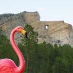 Flo visiting Crazy Horse Memorial.