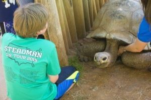 Tortoise at Reptile Gardens, Rapid City, SD